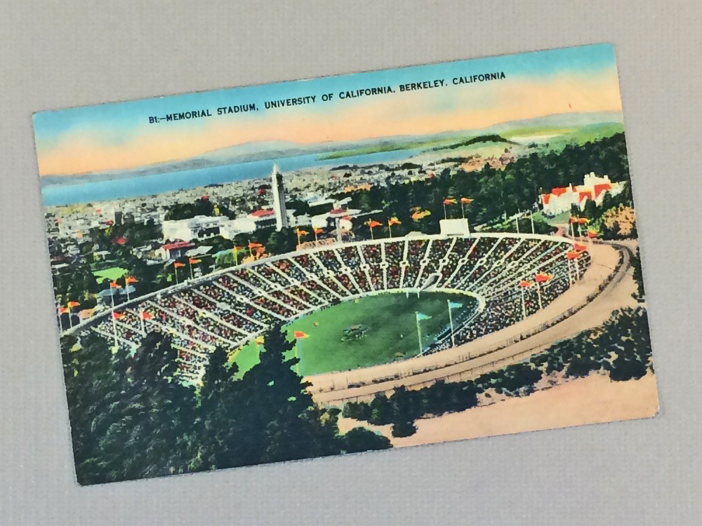 CAL Memorial Stadium Vintage Postcard