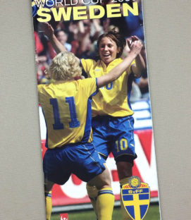 Women's World Cup 2003 Sweden Team Guide