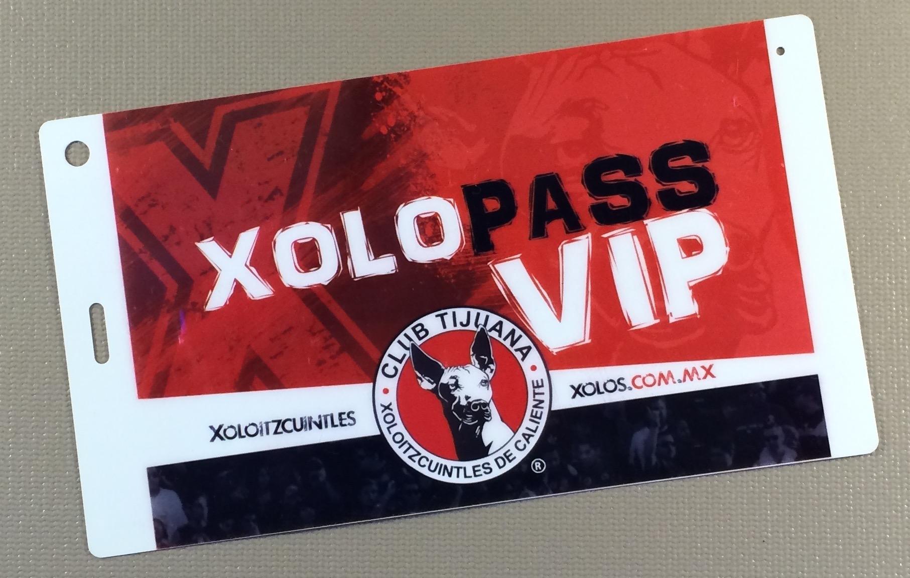 2010 Clausura XoloPass
