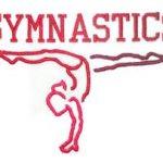 Gymnastics Defeats Tecumseh