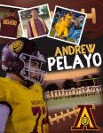 Senior Shout Out! Andrew Pelayo – Football and Track