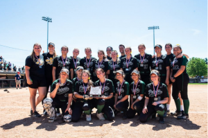 Softball takes 2nd at State Finals