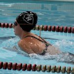 Swimming versus Central Magnet