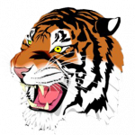 Tigers Cross Country Results from Patriot Invitational