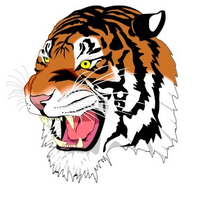 2018 Tiger Relays Results