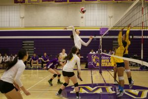 Volleyball v. Milpitas -photos courtesy of El Estoque