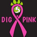 Arundel Volleyball Digs Pink!