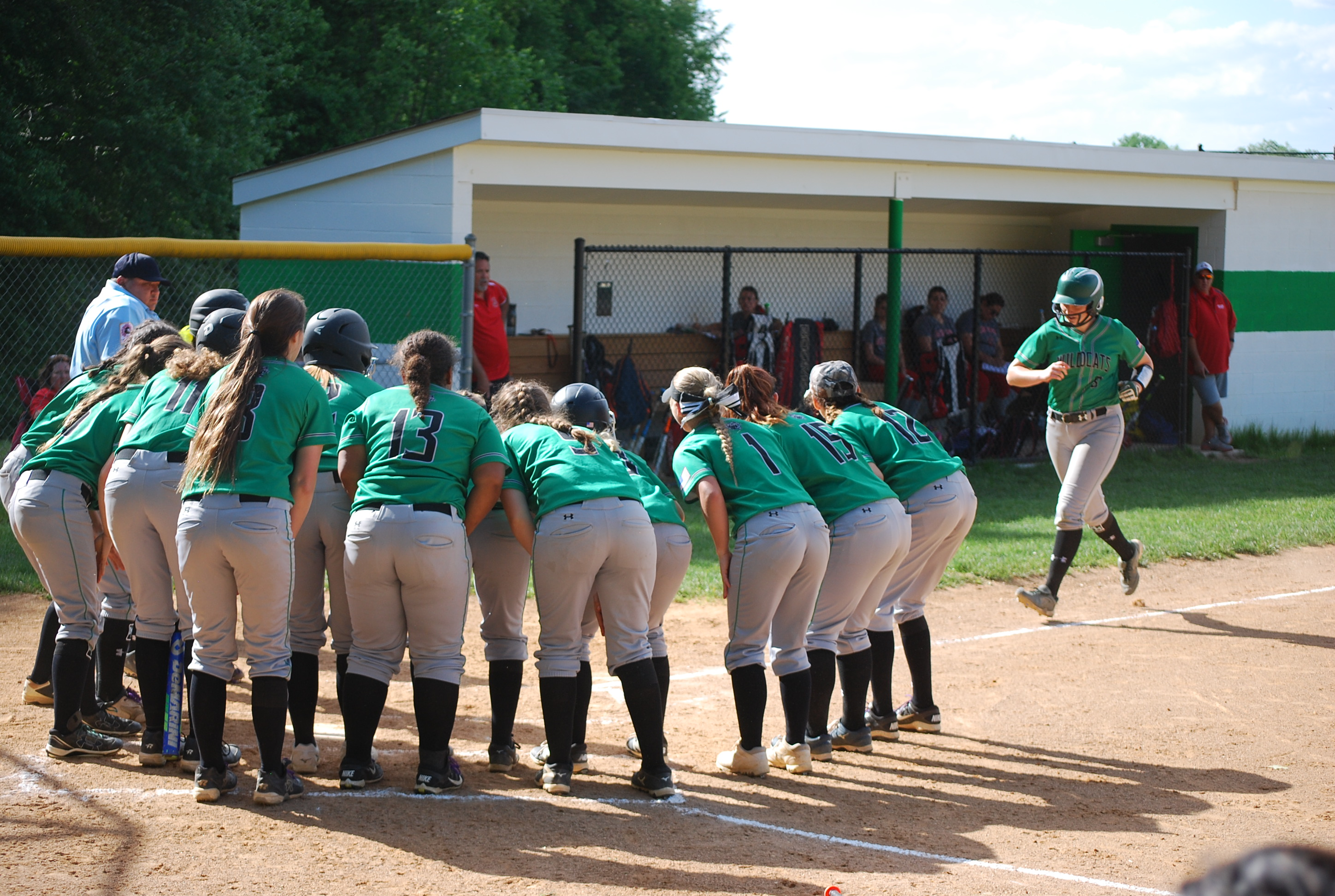 """Arundel Softball and Baseball """"Levels the Playing Field"""""""