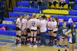 7th grade girls Volleyball vs Tiffin Columbian. Clyde wins 2-0 at Volley for the Cure