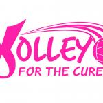 Girls Varsity Volleyball falls to Hamilton High School (Ohio) 3 – 2