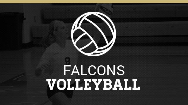 Summer Information for Volleyball