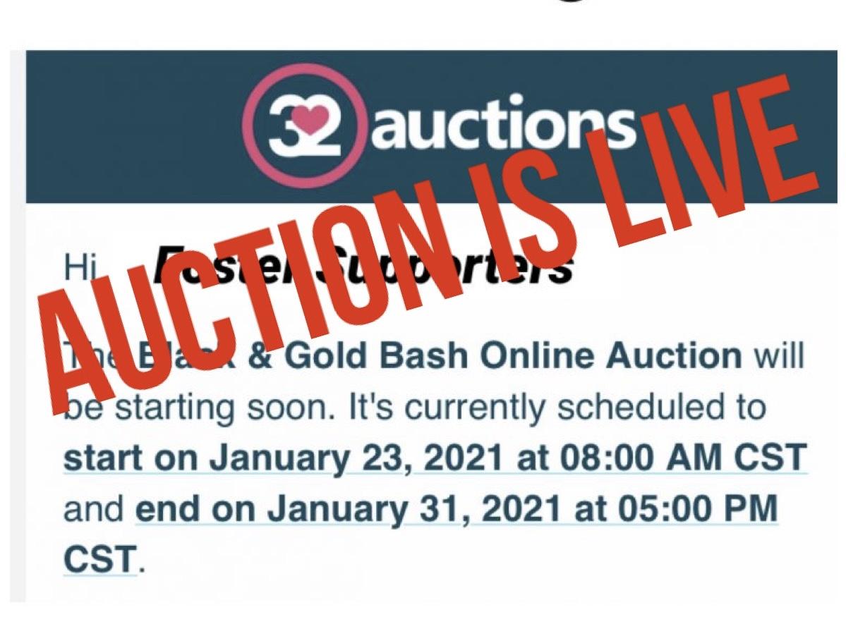 2021 Black & Gold Bash Auction is LIVE
