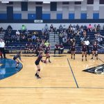 Lady Cats Beat Wylie East