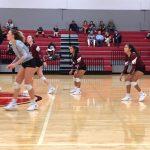 Ladycats beat Gainesville 3 – 0