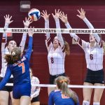 Ladycats fall to McKinney North 3 – 0