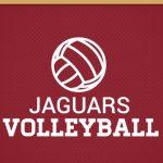 Girls Volleyball Updates