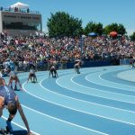 Wildcat Track & Field at State