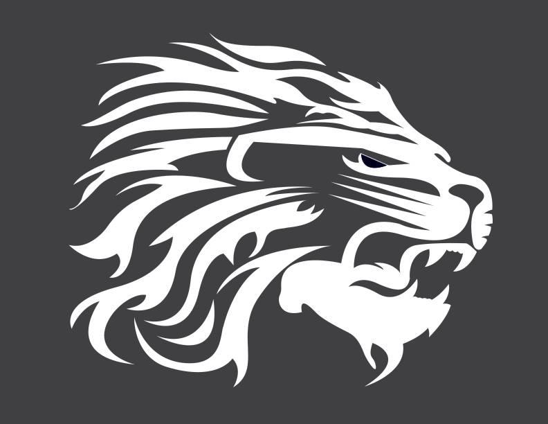 2018-2019 LION CHEER