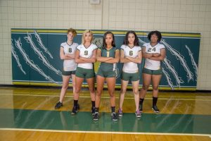 Volleyball 2016
