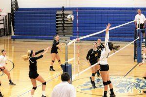 Waynedale at Chippewa Varsity Volleyball 9/8