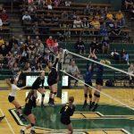 Waynedale Varsity Volleyball vs. Northwestern (Sectional Finals) 10/21/17