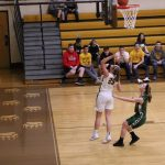 Waynedale Girls Basketball vs Smithville OHSAA DIII Sectional Semi-Finals 2/21/18