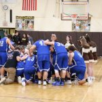 Waynedale Varsity Boys Basketball vs. Northwestern OHSAA Sectional Finals