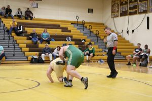 Waynedale Wrestling vs. Nordonia 2/6/19 Sr. Night