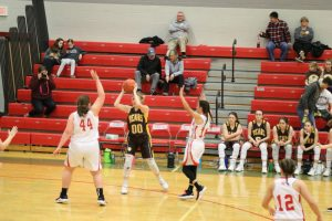 Waynedale JV/Varsity Girls Basketball vs. Norwayne 2/12/19