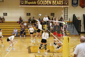 Waynedale Varsity Volleyball vs. Norwayne 9/12/19