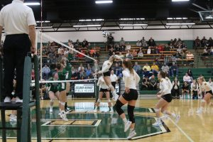 Waynedale Volleyball vs. Smithville (OHSAA DIII District Championship) 10/26/199