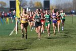 Kylee Gray Finishes in Top 50 at OHSAA DIII State Championships