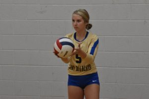 Volleyball player about to serve ball