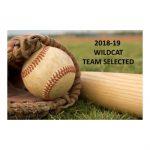 Spring–Baseball–2018-19 Wildcat Baseball Team Selections Announced
