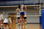 Fall-Volleyball-Lady Wildcats Take LaVergne 3-0.  To Play Mt. Juliet Tonight (Aug 27)