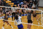 Fall-Volleyball–Lady Wildcats Take Win Number 4, Defeat Mt. Juliet 3-0