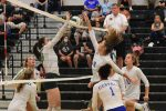 Fall–Volleyball–Lady Wildcats traveled to Bear Country and Came Home a Winner 3-1