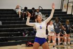 Volleyball--Photo Gallery 1--2020