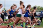 Spring– Track and Field– TSSAA Large Schools Section 3-North Subsectional Meet