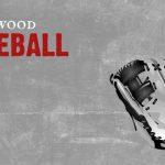 Varsity Baseball Beats Wabash