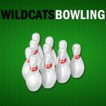 Looking for New Bowlers