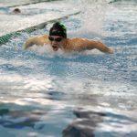 Novi Swim and Dive Win Big