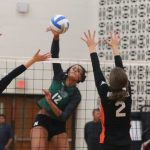 Novi Volleyball Rolls Past Northville
