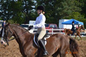 Equestrian Meet #1 August 26th