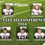2018 7-4A All-Conference
