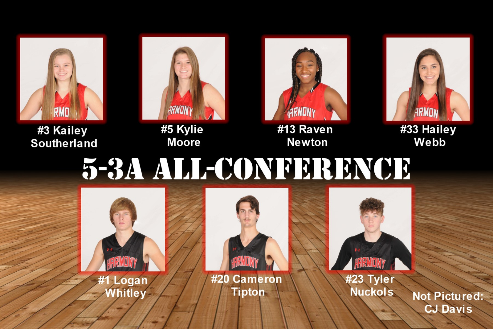 2019 5-3A All-Conference selections