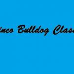 Minco Bulldog Classic Bracket