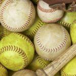 Spring Baseball & Softball Recap 2020