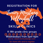 Jr Mustang Volleyball Skills Clinic Series