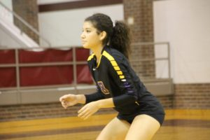 Volleyball #2 Gallery